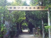 IMG_2012.1.27入口②
