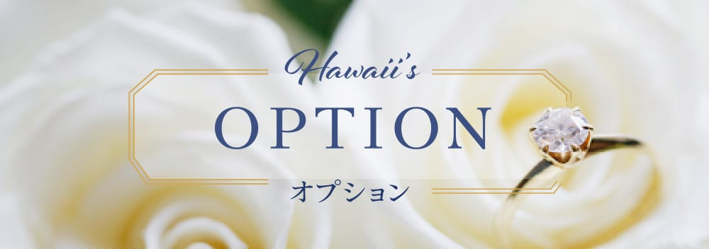 Hawaii's OPTION